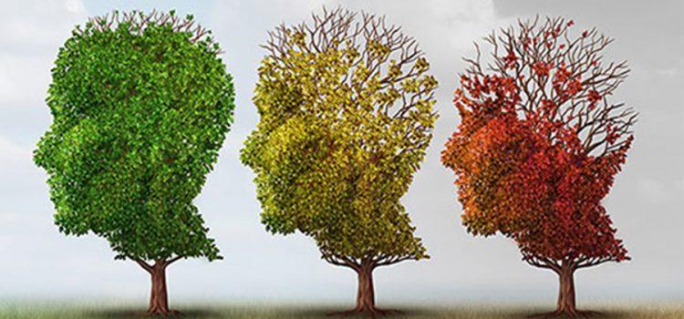 Як запобігти деменції